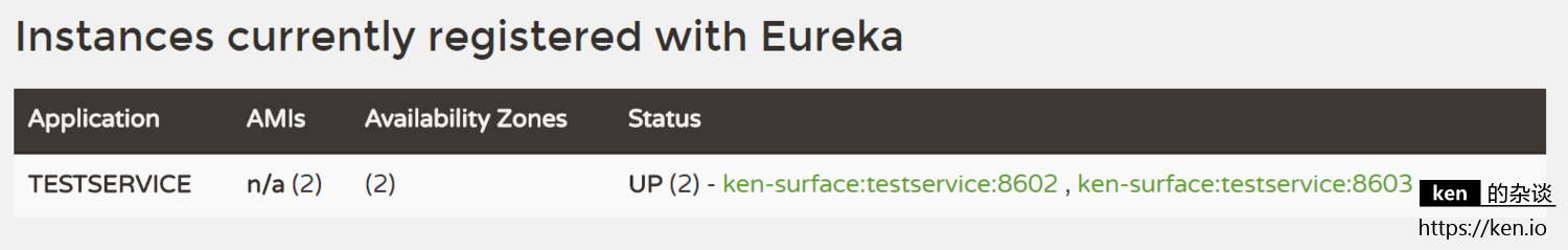 eureka instance registered